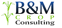 B&M Crop Consulting